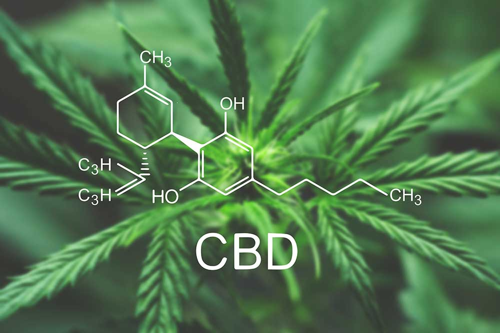 Could CBD Be The Next Major NASCAR Sponsorship Category?
